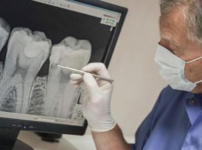 A dentist examines a teeth