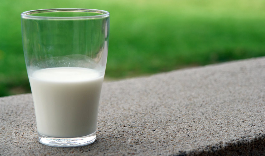 Close-up of a glass of white milk sits on a gray concrete curb next to green grass that can save a knocked-out tooth